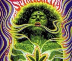 Cannabis, Spirituality and Sensibility
