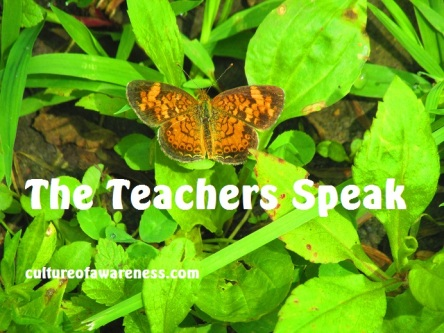 The Teachers Speak (KEEP)