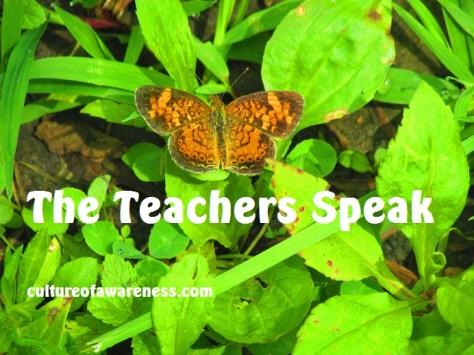 The Teachers Speak (KEEP)