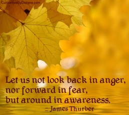 let-us-not-look-back-in-anger-nor-forward-in-fear-but-around-in-awareness-anger-quote