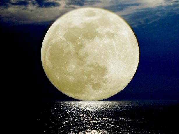full-moon-237523