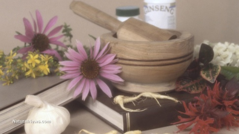 hrr48-homeopathy