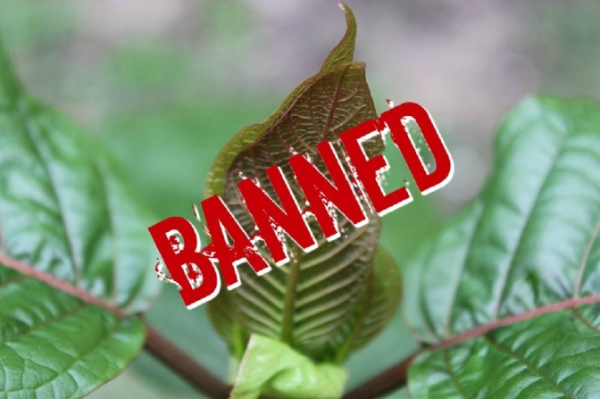 Kratom Helped Me Turn My Life Around, Now The DEA Has Banned It