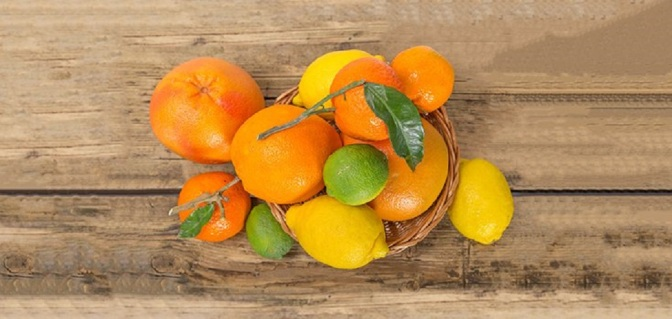 Citrus Fruits, Antioxidants Help Stop Obesity-Related Chronic Diseases, Study Says
