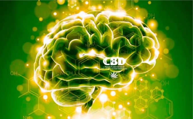Cops and Big Pharma Shamefully and Quietly Kill Legislation Allowing CBD Oil for Epileptic Kids