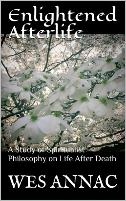 Enlightened Afterlife cover-photo