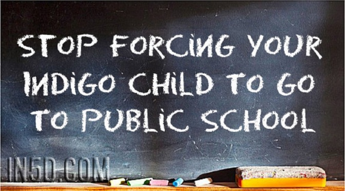 Stop Forcing Your Indigo Child To Go To Public School Fbhwt5h54wn