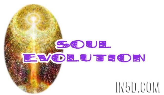 Soul Evolution