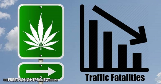 Large-Scale Study Shows Traffic Fatalities Significantly Lower in States with Legal Weed