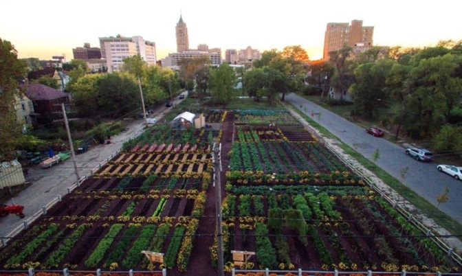 "First Urban ""Agrihood"" In America Feeds 2,000 Households For Free"