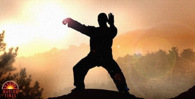 Master of Tai Chi Demonstrates the Surprising Power of Qi Energy