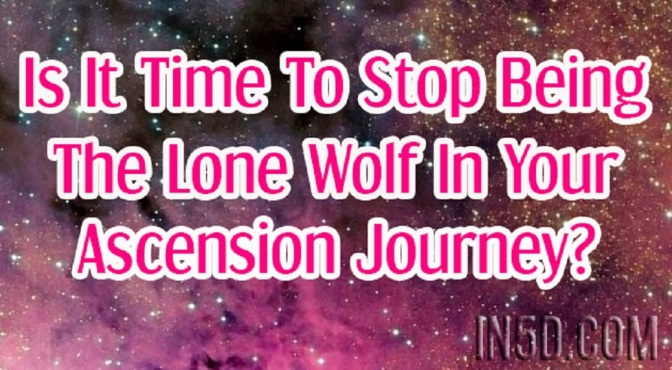 Is It Time To Stop Being The Lone Wolf In Your Ascension Journey?