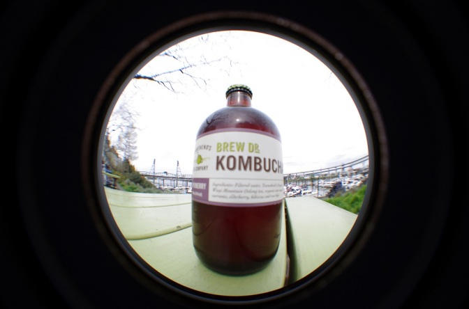 Stop the Govt from Pushing Probiotic Kombucha Drink Into the Liquor Store