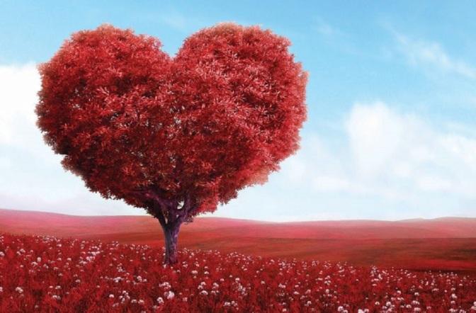 Understanding The Language of the Heart: The Original Language