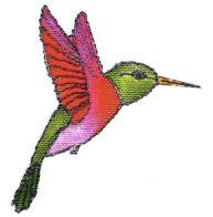 hummingbirdnew-ehc-295x300