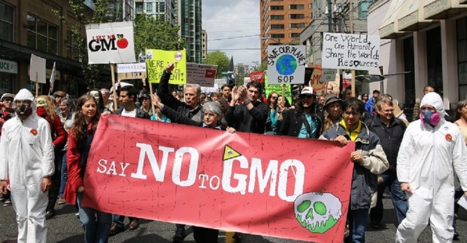 Monsanto Hired Paid Internet Trolls to Counter Bad Public Image, Lawsuit Claims