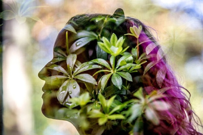 3 Spiritually Activating Herbs For Expanding Consciousness and Supercharging Health