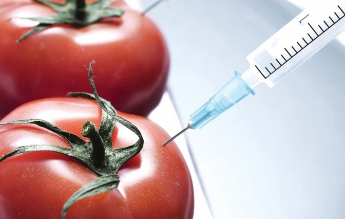 The Unhealthy Truth: Food Adulteration and How It Affects Us
