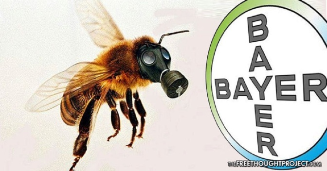 Bayer Accidentally Funds Study Showing Its Pesticide is Killing Bees, Promptly Denies Conclusions