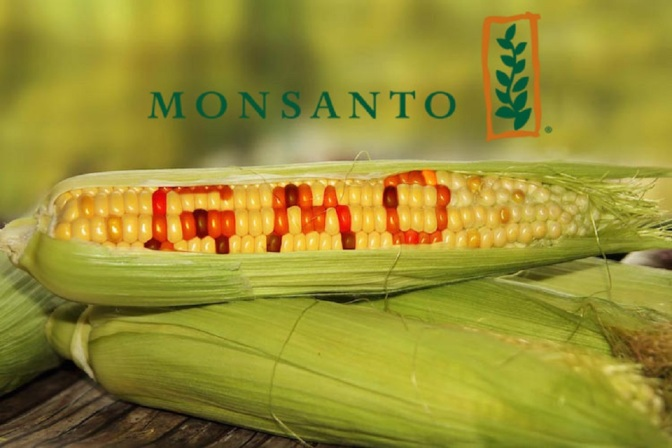 GMOs Just Got A Lot More Frightening With Approval Of New Monsanto Product