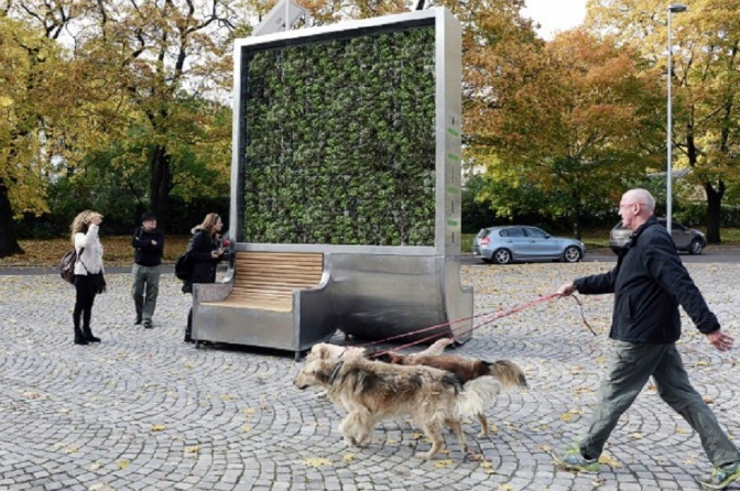 """This Single """"Tree"""" Can Absorb As Much Air Pollution As An Entire Forest"""