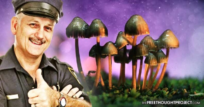 Landmark Study Shows Psychedelics Far More Effective at Reducing Crime Than Police