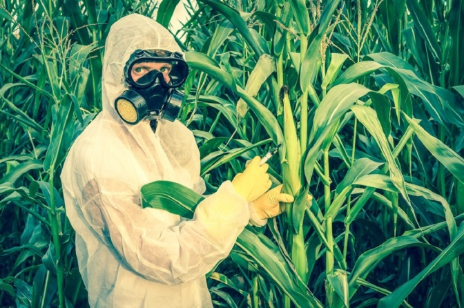 Newsweek Hit Piece Calling Organic Food a 'Scam' Authored by Known Monsanto Propagandist