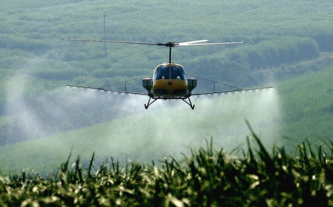 EPA Wants China to Sell Bee-Killing Pesticide for 165 Mil Acres of US Farmland