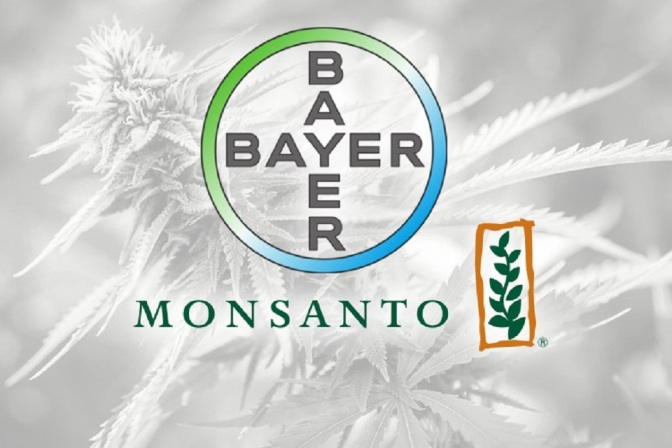 The Approved Monsanto-Bayer Merger Could Spell Disaster for a Budding Cannabis Industry