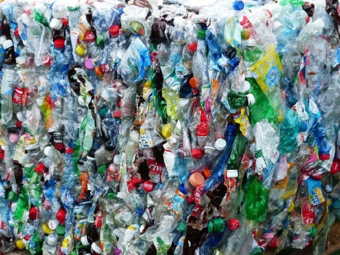 Scientists Accidentally Discover Enzyme That Digests Plastic