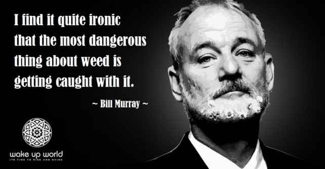 Stand Up for Cannabis – Stand Up for Freedom! Stand-up-for-cannabis-stand-up-for-freedom-bill-murray-ironic-most-dangerous-thing-about-weed-is-getting-caught-1024x534