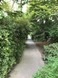 walk-in-park-225x300
