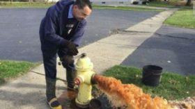 flint-fire-hydrant-300x169