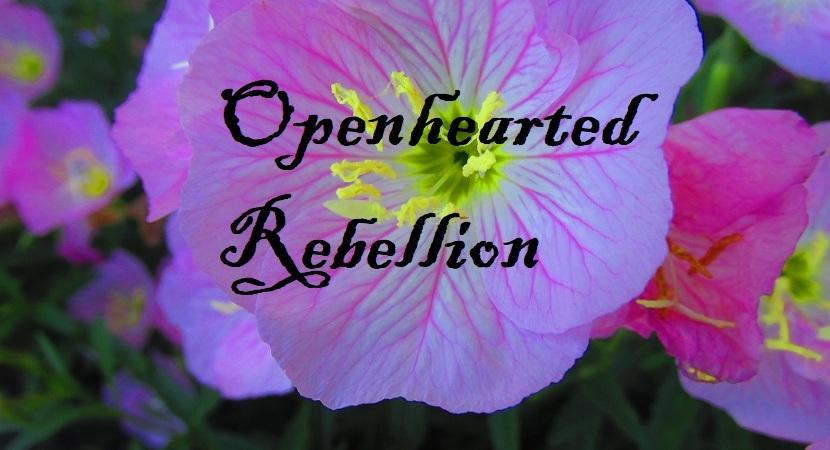 openhearted-rebellion-photo